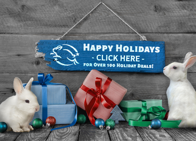 Click Here for Over 100 Holiday Deals